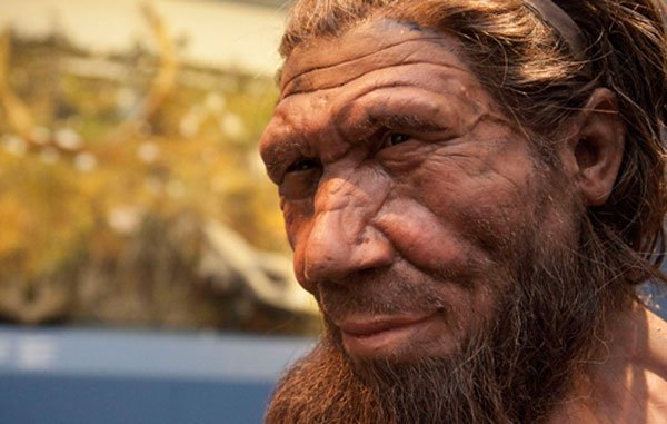 myths-neanderthals