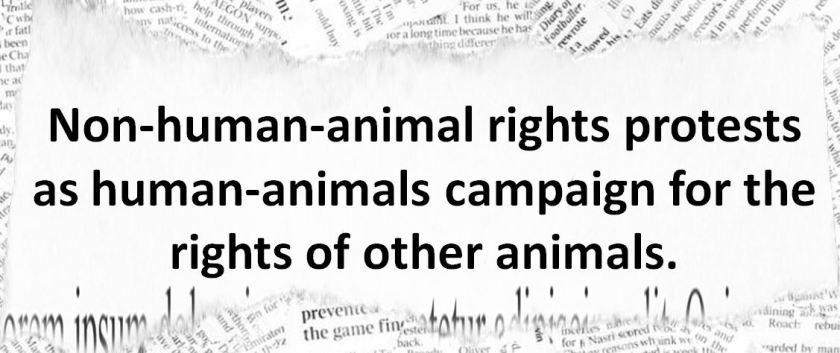 rights animals